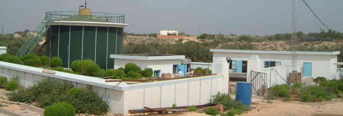 非洲迄今最为成功的沼气工程:突尼斯养鸡场沼气发电示范工程